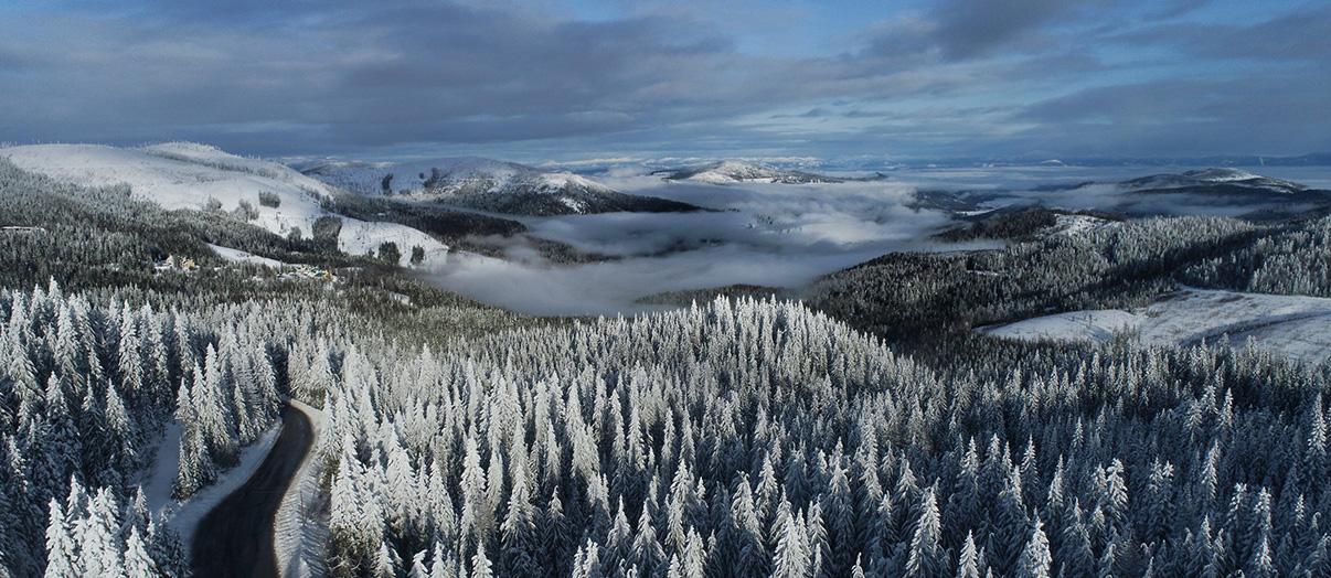 Mt. Spokane